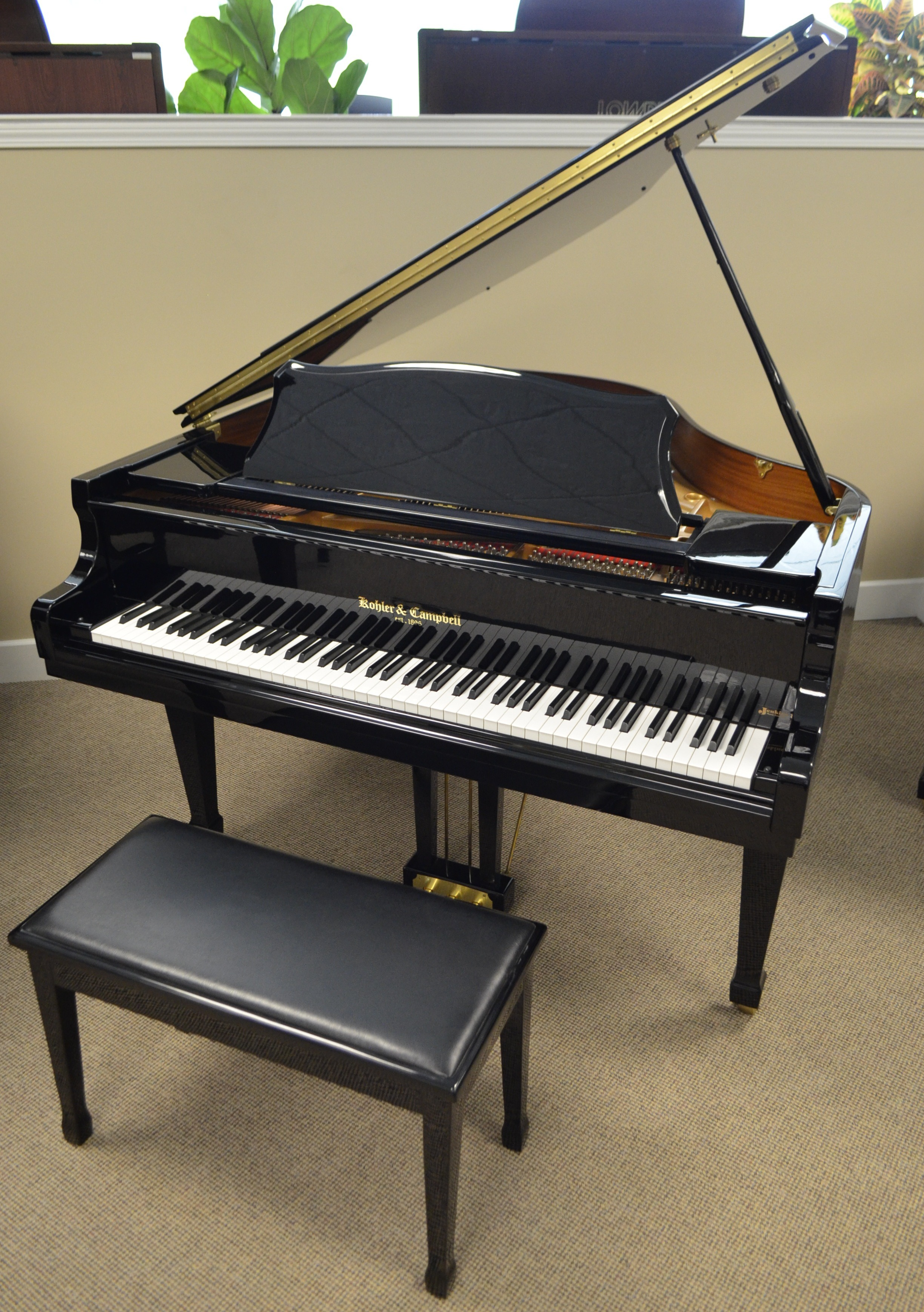 You CAN have your Grand Piano d play it too PianoNotes line